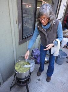 Wolf Lichen Dye Pot